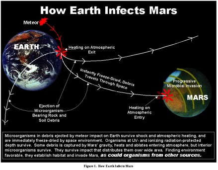 """Taken from """"Scientific Logic for Life on Mars"""" by Gilbert V. Levin at www.gillevin.com via Bing Images."""