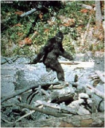 Sasquatch or hoax? (taken from spatzo.net via Bing Images)