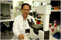 Prof. Wei Duan, Director of Nanomedicine, Deakin University (Geelong, Victoria, Australia); taken from Deakin University website via Bing Images.