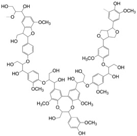 Partial structure of lignin is rich in 'aromatic' 6-membered benzene-ring derivatives (taken from polypompholyx.com via Bing Images).