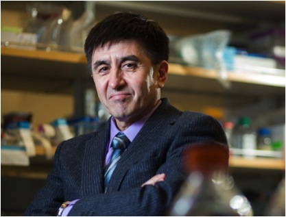 Dr. Mitalipov, 52, has shaken the field of genetics by perfecting a version of the world's tiniest surgery: removing the nucleus from a human egg and placing it into another. In doing so, this Soviet-born scientist has drawn the ire of bioethicists and the scrutiny of federal regulators. Credit Leah Nash, NY Times.